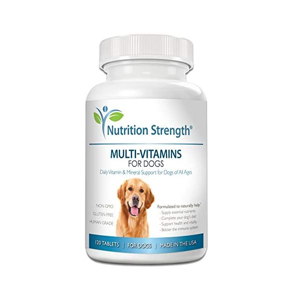 Nutrition Strength Multivitamins for Dogs, Daily Vitamin and Mineral Support, Nutritional...