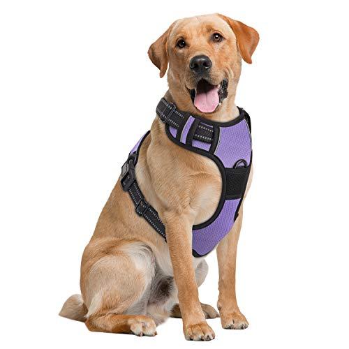 Pawaboo Hundegeschirr, Kein Pull Design Haustierwestengeschirr, Weich Gepolstertes Reflektierendes Oxford, Verstellbare Träger für Kleine, Mittelgroße Hunde, Lila