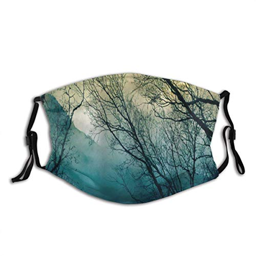Adult Mask Nature Surreal Morning Fog in Mist Forest Mountain Valley Habitat Themed Himalayan Print Fabric Cotton Face Masks Washable Cloth Masks for Men Women Cycling Camping Travel