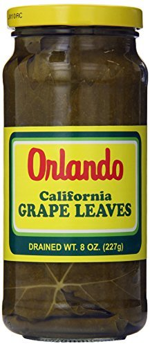 dried grape leaves - 5
