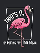 That's It I'm Putting My Foot Down Flamingo Funny: College Ruled Notebook Paper and Diary to Write In / 120 Pages / 8.5