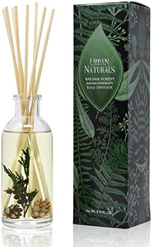 Top 10 Best forest pine essential oil Reviews