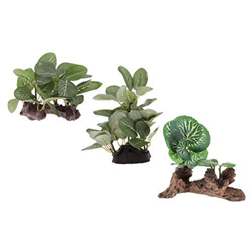 PETSOLA 3X Plantas De Terrario para Dragones Barbudos, Lagartos, Geckos, Hábitats De Reptiles Serpientes