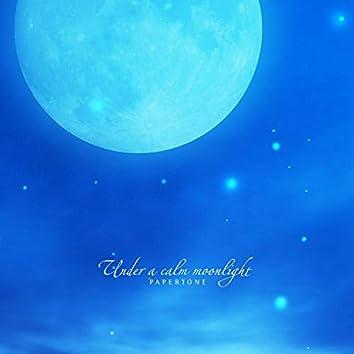 고요한 달빛 아래