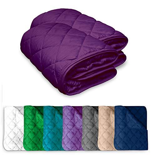 2 Stück Microfaser Sommer Steppbett 135x200 OekoTex – lila violett Kochfest 95° Leichtsteppbett für Camping und heiße Tage I ohne Bezug verwendbar I farbig & bunt I 2er Set