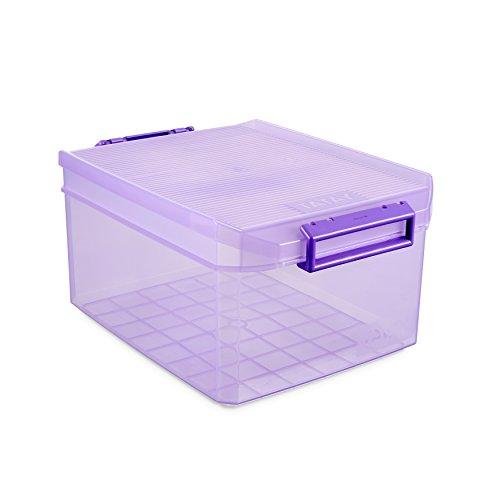 Tatay Caja Almacenaje Multiusos con Tapa, 14 L de Capacidad, Con Asas, de Polipropileno, Libre de BPA, Rojo (Ciruela), Medidas 27 x 39 x 19 cm