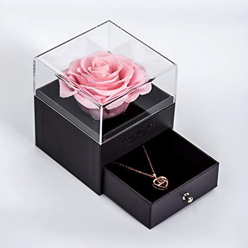 Sunia Preservada Real Rose Hecho a Mano Eternal Rose with Love You Collar Regalo con 100 Idiomas Regalos Románticos Flor de Rosa Real para el Día de San Valentín Aniversario de Bodas Día de la Madre