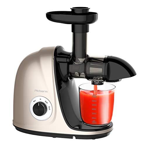 Slow Juicer, Picberm,Entsafter BPA-frei mit 2 Geschwindigkeitsmodi Entsafter Gemüse und Obst Ruhiger Motor und Umkehrfunktion und Reinigungsbürste Champagne