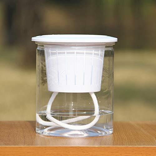 SHGK Maceta de Resina Creativa Automática Absorbente de Agua Transparente Ronda Macetas de plástico Plástico Absorbente Forro de Cuerda de algodón
