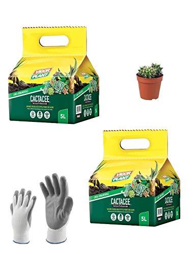 VIGORPLANT Terriccio per La Coltivazione delle Piante grasse succulente: 2 Confezioni da 5 lt. di Terriccio Professionale Cactacee, Crassulacee + Omaggio Guanti Lavoro e Piccola Piantina grassa