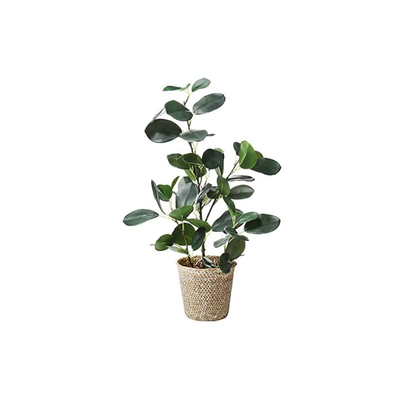 """silk flower arrangements sarosora artificial ficus tree fake plants in weaved pot 20"""" height for living room decor indoor home office ins style (green, 1)"""