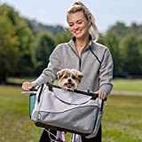 image of lady riding bicycle with her dog in bike carrier basket