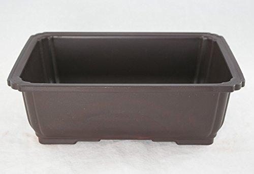 Rectangular Plastic Bonsai / Succulent Pot 10.5'x 7.75'x 3.5' - Dark Brown
