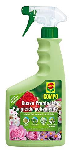 COMPO Duaxo Pronto Uso, Fungicida Polivalente, Per la Protezione delle Piante Ornamentali da casa e da giardino, 750 ml
