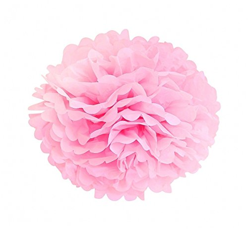 LG-Free 10pcs 8inch 10inch Paper Pom Poms Decorative Paper Flower Hanging Rose Flower Balls DIY Paper Handmade Craft for Wedding, Baby Shower, Birthday,Party Decorations,Home Decor