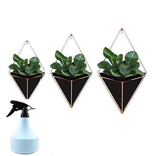 MOTZU 3 Stück Schwarze Wandvase, Luftpflanzen Hängenden Blumenampel, Metall Geometrische Pflanzetöpfe Übertopf Für Zimmerpflanzen,Sukkulenten, Kakteen, Kunstpflanzen + Kleine Gießkanne(Blau)