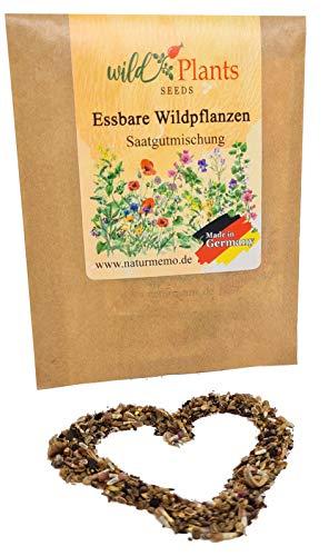 Samen für essbare Wildpflanzen und Blumen, mit Broschüre, mehrjährig und winterhart, für 1.5 qm, auch als Schildkröten-Futter, essbare Wildblumensamen