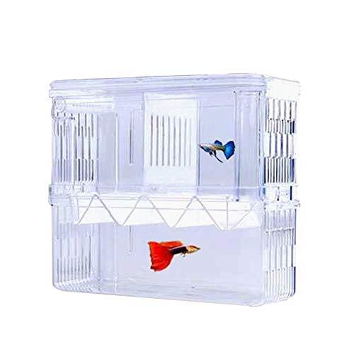 Tiberham, scatola di isolamento per pesci, in acrilico, a doppio strato, con ventose, per allevamento e allevamento