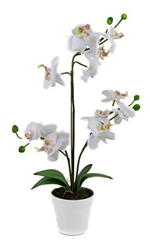 artfleur - künstliche Phalaenopsis 45 cm getopft Orchidee Kunstpflanze (weiß)