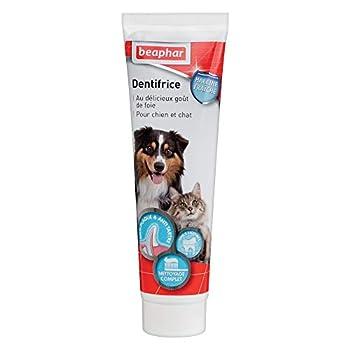 BEAPHAR - Dentifrice haleine fraîche pour chien et chat – Très appétant – Sans rinçage - Élimine la plaque dentaire – Empêche la formation de tartre – Combat la mauvaise haleine - Tube de 100 g