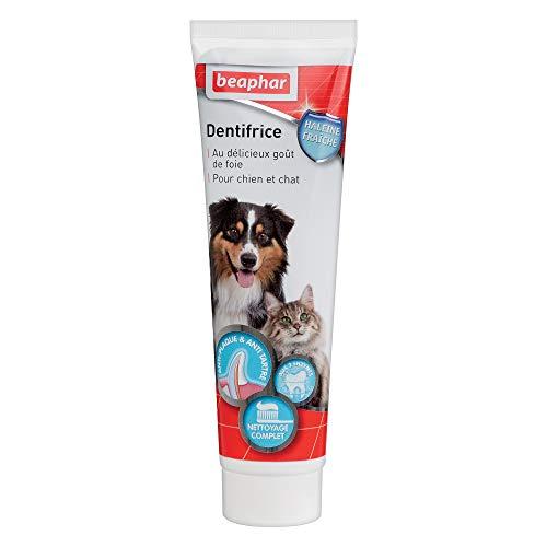 BEAPHAR - Dentifrice haleine fraîche pour chien et chat – Tr