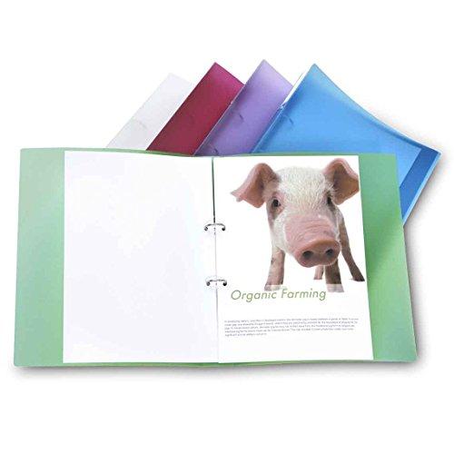 Rapesco Documentos - Carpeta A4 de 2 anillas fabricada en materiales reciclados de colores, 10 unidades