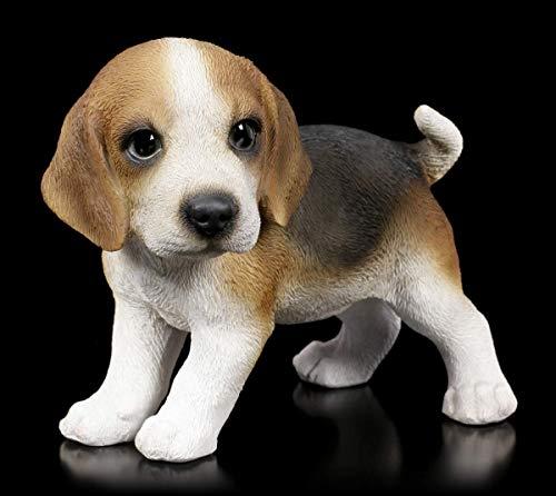 Hunde Figur - Beagle Welpe stehend | Deko-Figur, Deko-Artikel, Hunde-Baby, H 12,5 cm