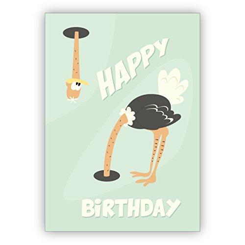 Grappige jaren 60 humor verjaardagskaart met vogelstrook: Happy Birthday • mooie wenskaarten met enveloppen zakelijk & privé 10 Grußkarten