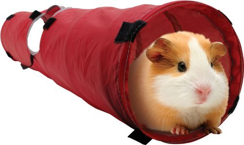 Living World Pet Tunnel, Red/Grey