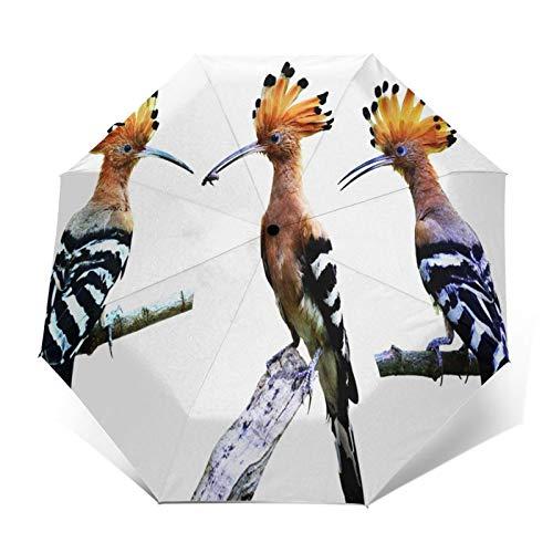 Paraguas Plegable Automático Impermeable Cabeza Común, Paraguas De Viaje Compacto A Prueba De Viento, Folding Umbrella, Dosel Reforzado, Mango Ergonómico