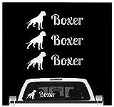 Siviwonder Deutscher Boxer - 3er Set Auto Aufkleber Autoaufkleber Hundemotiv Hundeaufkleber autoaufkleber Hund Folie Aufkleber Silber