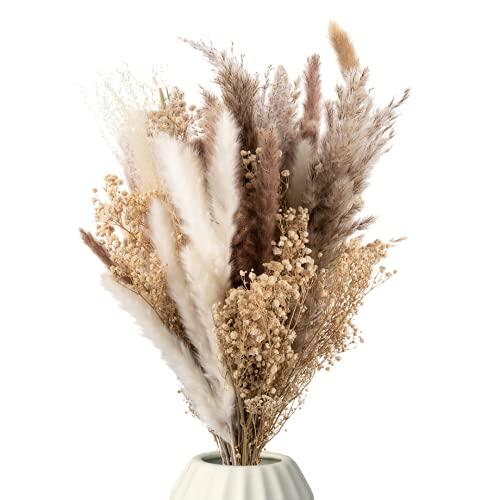 Mia Milano Bouquet di fiori secchi con vera erba di Pampa ed eucalipto I Fiori secchi Deco Soggiorno I Bouquet Boho di prodotti naturali secchi