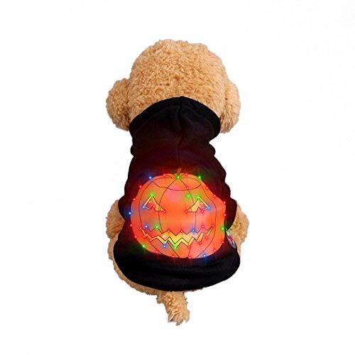 Abcsea Haustier Kostüm, Haustier Kleidung, Hund Kleidung, Haustier Glühen Kleidung, Leuchten Im Dunkeln, Hund Halloween Halloween Glühen Kostüm, Kürbis Stil - Schwarz - S
