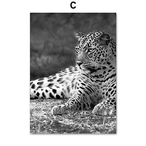 XWArtpic Elefant Löwe Leopard Kaktus Blume Pflanze Wandkunst Leinwand Malerei Nordic Poster Und Drucke Wandbilder Für Wohnzimmer Decor 30 * 40 cm