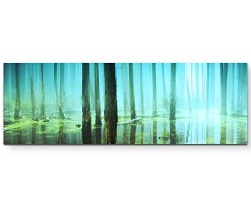 Paul Sinus Art Leinwandbilder   Bilder Leinwand 150x50cm Wald unter Wasser