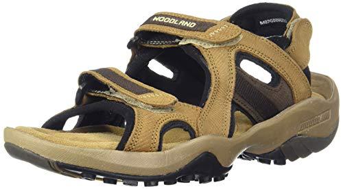 Woodland Men's Camel Leather Sandals-7 UK/India (41 EU) (GD 2662117-7)