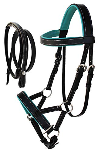 CHALLENGER Horse Western Leather Training Tack Bitless Sidepull Bridle w/Reins 7711TL-F