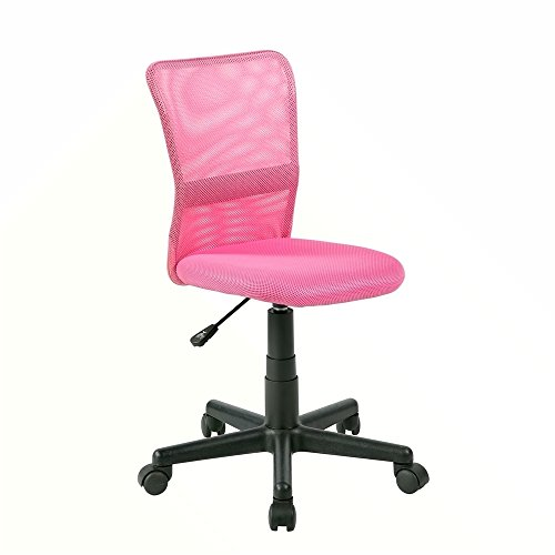 EuroStile Desk Chair Mid-Back Adjustable Mesh Chair Ergonomic Swivel Computer Office Chair 8252S(Pink)