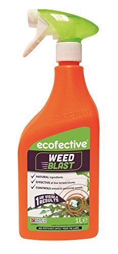Ecofective Weedblast Weed Killer 1L Ready to Us