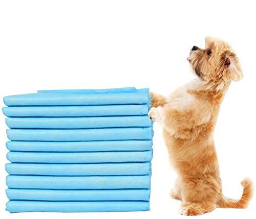 Nifogo Toallitas de Entrenamiento para Mascotas,Empapadores Perros,Empapadores de adiestramiento para Perros,Toallitas de adiestramiento Perros,Ultraabsorbente (50PCS, 60 * 90cm)
