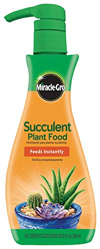 Miracle-Gro Succulent Plant Food – For Succulents including Cacti, Jade, & Aloe