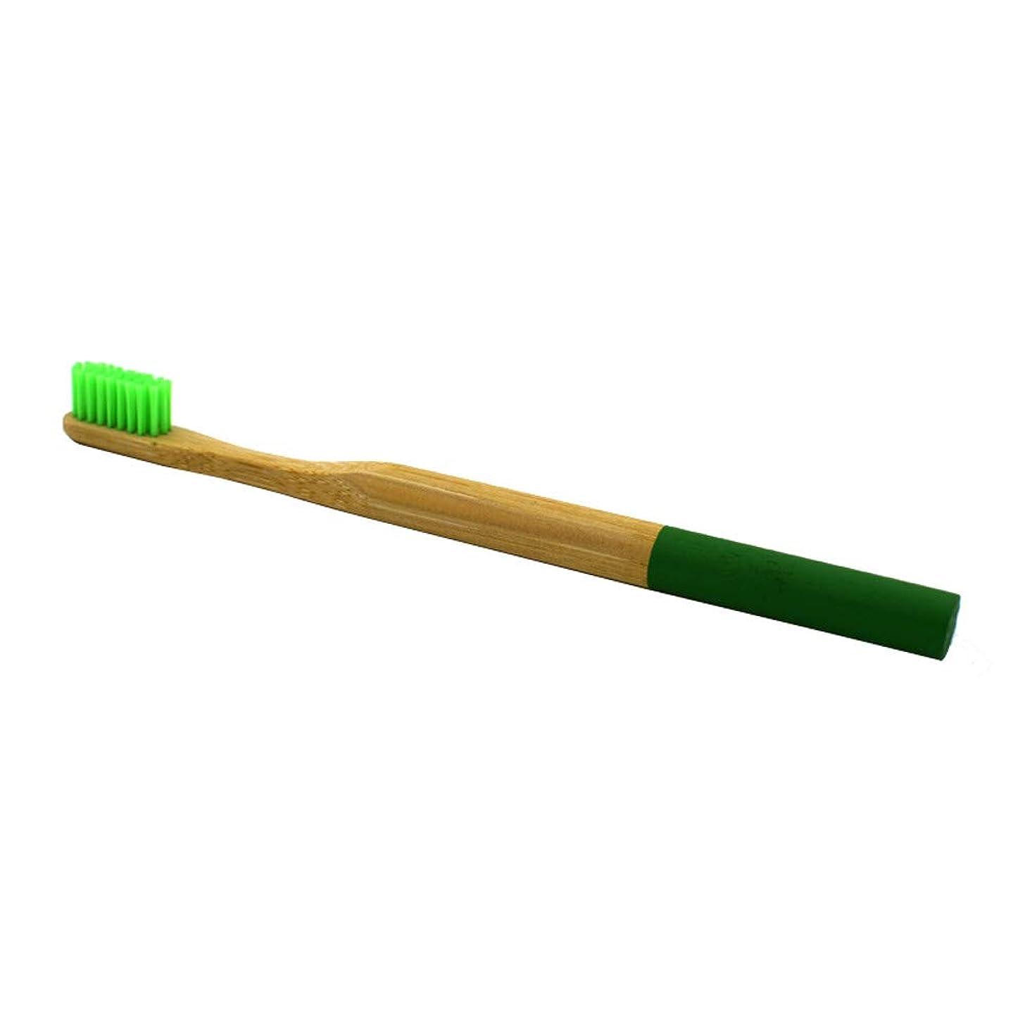 Hoshell Bamboo Natural Toothbrush Eco-Friendly Natural Adult Medium Biodegradable Toothbrush (Green)