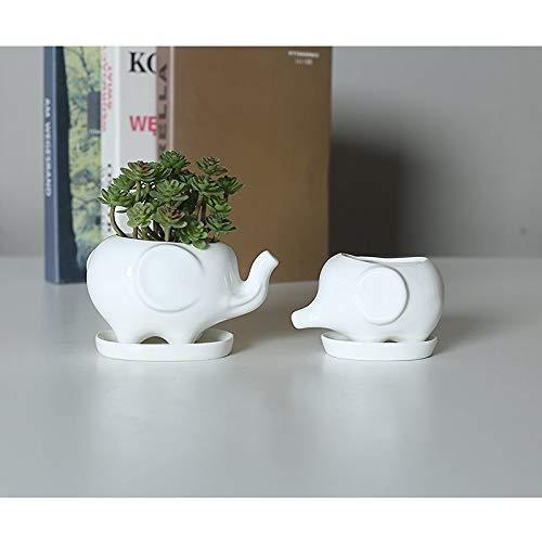 YANJ Saftige Blumentopf, Niedlich Elephant White Keramik Blumentopf mit Tray for Sukkulenten Kakteen Mini-Topf-Pflanzer-Hausgarten-Dekoration