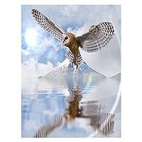 初心者アーティスト - 水彩アクリル塗装油絵アートクラフトデコレーションギフトグレーフクロウのための大人巻きキャンバスキットのための数字による塗料 (色 : Grey owl, Size : 30x40cm)