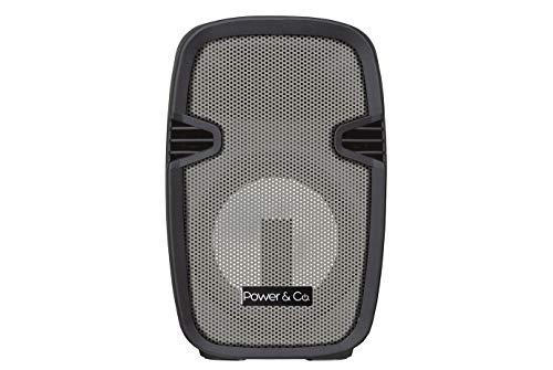 Power & Co. Bocina 4200W Color Gris con batería Recargable XPL8000TT