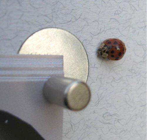 FLUX Objects Mini-Magnet-Pinnwand: Die kleinste + stärkste der Welt!