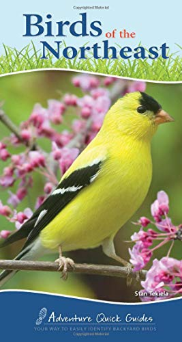 Birds of the Northeast: Your Way to Easily Identify Backyard Birds (Adventure Quick Guides)