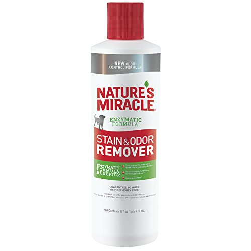 2. Nature's Miracle Stain and Odor Remover for Dogs