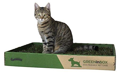 GreenInBox Special Cat - Cuccia in Vera Erba per Gatti