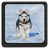 Perro esquimal C2 Mango de 3 cajones para armario Armarios perillas de...